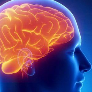 Рис. 4. При воспалении атеромы головы инфекция может легко проникнуть в мозг.