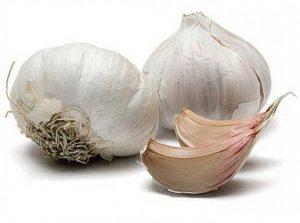 Рис. 2. Для лечения кондилом в домашних условиях используют чеснок.