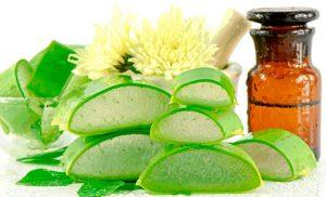 Рис. 2. Настойка алоэ и мед позволяют лечить бартолинит в домашних условиях